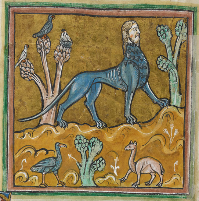 Manticore_-_British_Library_Royal_12_F_xiii_f24v_%28detail%29