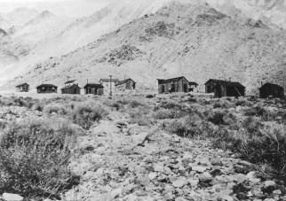 Carrara-Nevada-lemmon-16