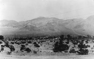 Carrara-Nevada-palsgrove-5