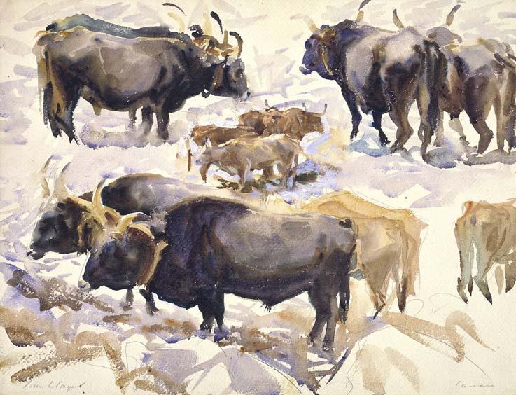 Oxen, Carrara 1911-13 by John Singer Sargent 1856-1925