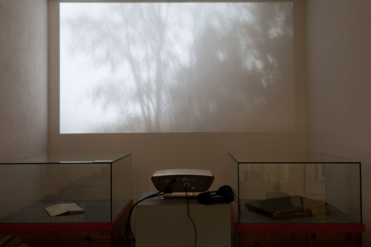 Juan-Pablo-Macias-Apologia-Carrara-Database