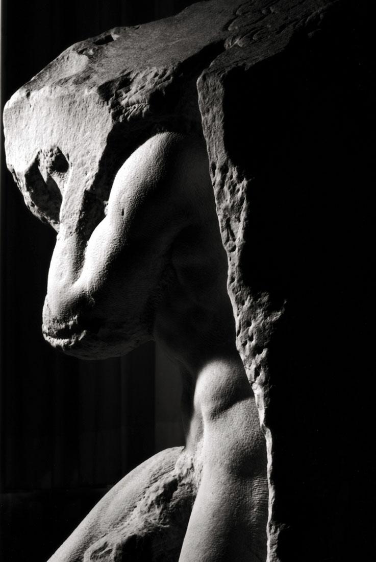 Amendola-Photos-Michelangelo-Prisoner