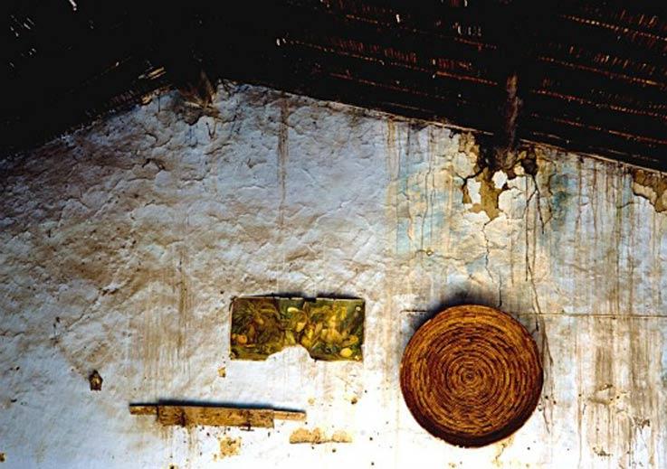 Benvenuto-Saba-MUG-Nature-Portanti-Forte-dei-Marmi-arte